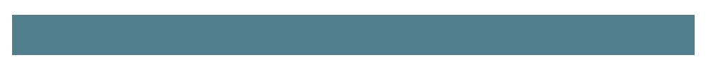 DebsWebs Logo swoosh