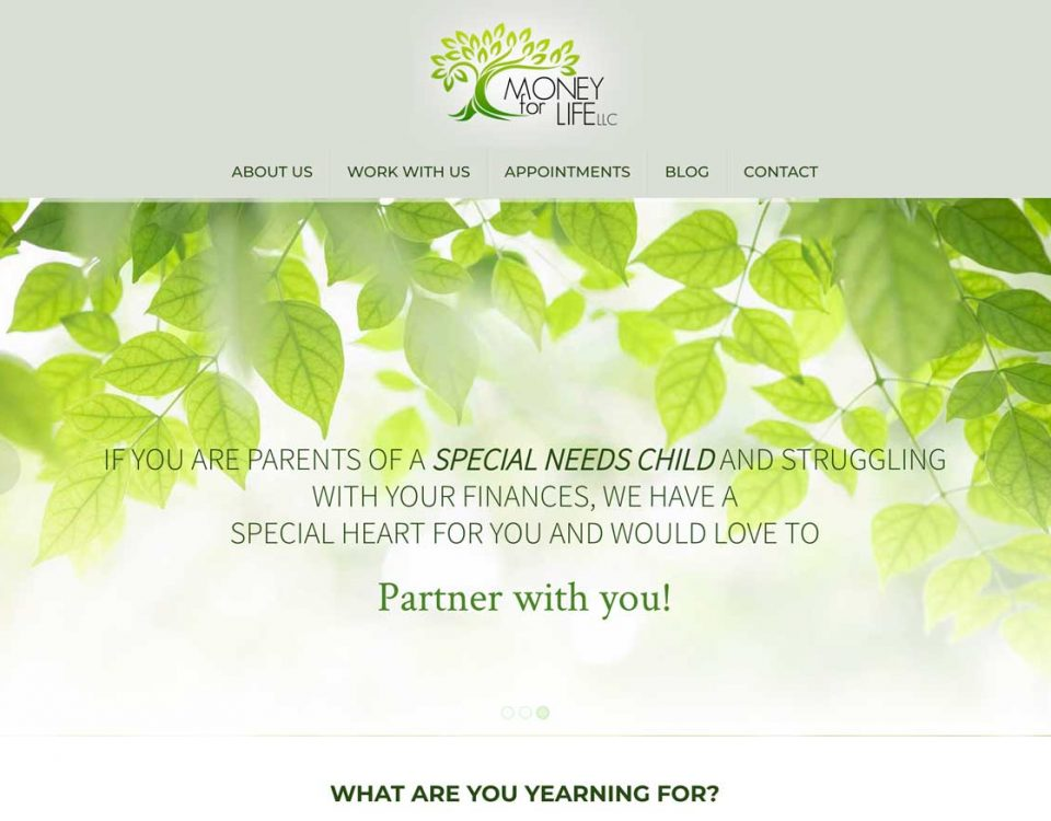 Money For Life website